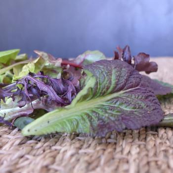 mesclun salade