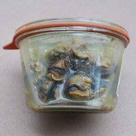 escargot court bouillon