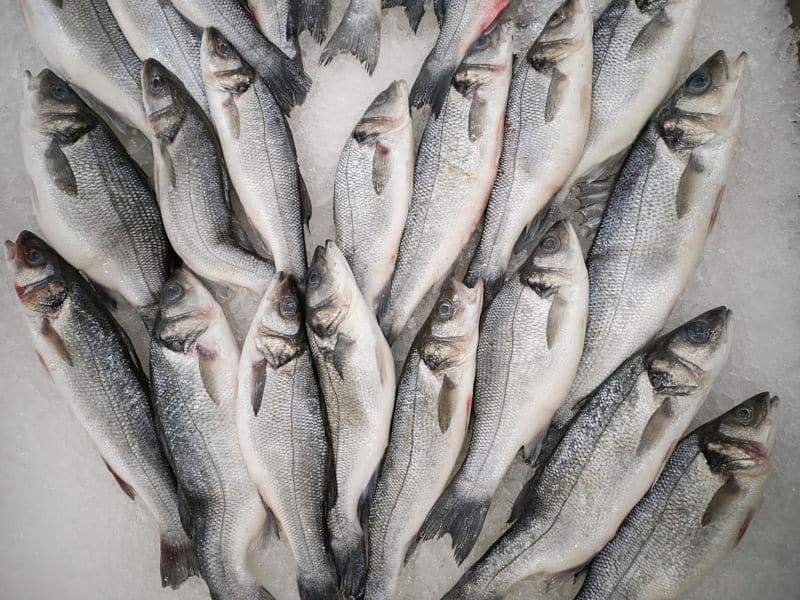 Tout savoir sur les bienfaits du poisson fumé…