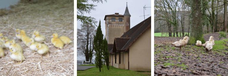 Chateau Bellevue situé dans le Béarn, le Sud Ouest de la France