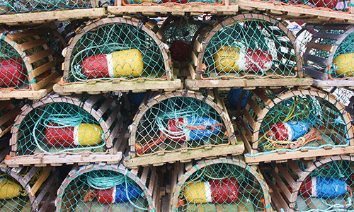 Cages à homards bretons