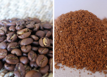 Café moulu VS Café en grain